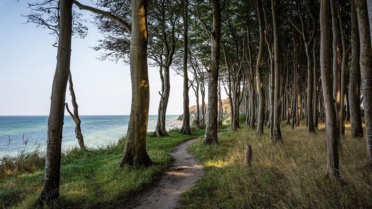 Strand-Rügen